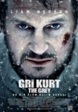 Gri Kurt full hd izle